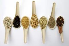 Misto delle spezie e delle erbe in un cucchiaio Immagine Stock
