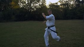 Mistrz karate, transakcje serie strajki na haliźnie W ranku w miasto parku, Improwizuje walkę z cieniem zdjęcie wideo