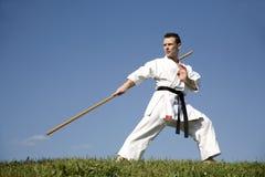 mistrza karate kata szkolenie zdjęcie royalty free