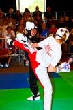 mistrzostwo światu kickboxing mistrzostwo 2011 Zdjęcie Royalty Free