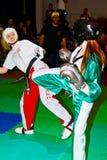 mistrzostwo światu kickboxing mistrzostwo 2011 Zdjęcia Royalty Free