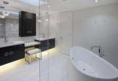 Mistrzowska łazienka zdjęcie stock
