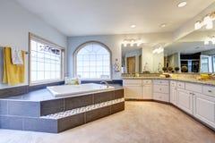 Mistrzowska łazienka z ampuły lustrem, tęsk odpierająca i luksusowa wanna obrazy royalty free