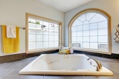 Mistrzowska łazienka z luksusem z wanną i dużymi okno obraz royalty free