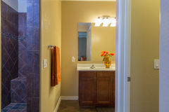 Mistrzowska łazienka Zdjęcie Royalty Free