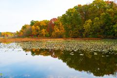 The Mists of Autumn. The rich colors of fall surround this Michigan lake on a hazy evening just after sunset Stock Photo