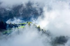 Summer rain and fog in mountains, South Tyrol, Italy. Sun lighting small part of meadows and trees in Dolomites