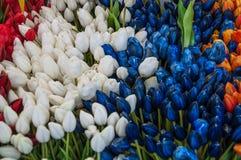 Mistura colorida da tulipa imagens de stock