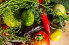 Mistura colorida de muitos legumes frescos diferentes fotografia de stock