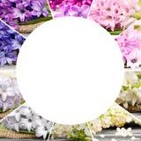 Mistura da flor da mola Fotografia de Stock