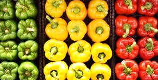 Mistura da pimenta Imagens de Stock