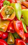 Mistura da pimenta Imagem de Stock