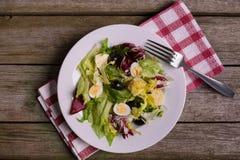 Mistura da salada verde, ainda vida no fundo de madeira rústico Fotos de Stock Royalty Free