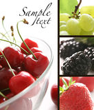 Mistura das frutas Foto de Stock