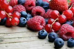 Mistura de berrie differrerent imagem de stock royalty free