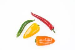 Mistura de chillis coloridos isolada em um fundo branco Foto de Stock Royalty Free