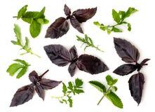 Mistura de ervas diferentes Temperos para cozinhar em um fundo branco, isolados Foto de Stock
