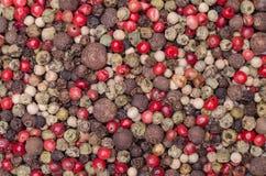 Mistura de ervilhas da pimenta Imagens de Stock