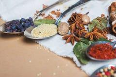 Mistura de especiarias e de ervas diferentes, cozinheiro e ingredientes da culinária na tabela com a decoração da folha de louro  Fotos de Stock