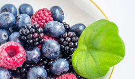Mistura de frutas Imagens de Stock