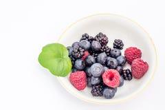 Mistura de frutas Foto de Stock