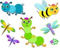 Mistura de insetos bonitos Imagem de Stock Royalty Free