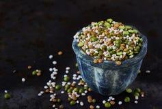 Mistura de leguminosa secadas e de cereais Foto de Stock