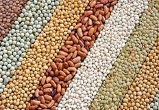 Mistura de lentilhas secadas, ervilhas, feijões de soja, feijões Fotografia de Stock Royalty Free