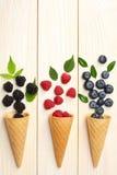 Mistura de mirtilos, amoras-pretas, framboesas no cone de gelado na tabela de madeira clara Imagens de Stock Royalty Free