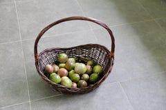 Mistura de Passionfruits maduro e verde na cesta de Brown Foto de Stock