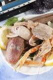 Mistura de peixes frescos Imagens de Stock