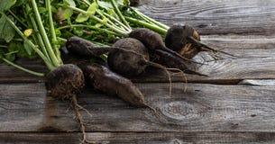 Mistura de rabanetes pretos orgânicos rachados com partes superiores verdes frescas Imagem de Stock