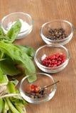 Mistura de sal e de pimenta Imagem de Stock