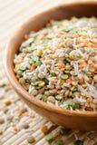 Mistura de sopa Imagem de Stock Royalty Free
