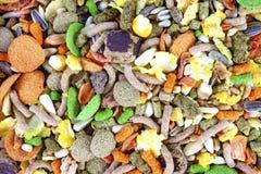 Mistura do alimento do roedor imagem de stock royalty free