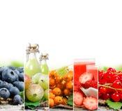 Mistura do suco de fruta Fotos de Stock Royalty Free