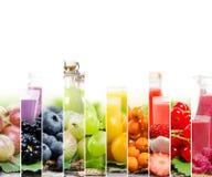 Mistura do suco de fruta Imagens de Stock Royalty Free