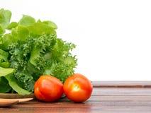 Mistura do tomate, do iceberg franzido e do carvalho verde no backgrou branco Fotos de Stock Royalty Free