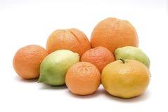 Mistura dos citrinos Imagem de Stock