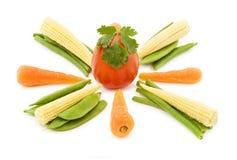 Mistura dos legumes frescos Fotos de Stock