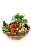 Mistura vegetal Imagem de Stock Royalty Free