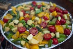 Mistura vegetal preparada em uma grade Fotos de Stock
