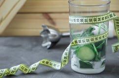 Misturador completamente dos vegetais e o iogurte e o medidor conceito 90 60 90 Fotografia de Stock Royalty Free