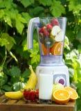 Misturador elétrico com frutas nele imagem de stock