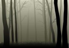 misty δάση διανυσματική απεικόνιση