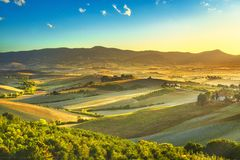 Misty πανόραμα επαρχίας της Τοσκάνης, κυλώντας λόφοι και πράσινοι τομείς στο ηλιοβασίλεμα Ιταλία Πίζα στοκ φωτογραφία