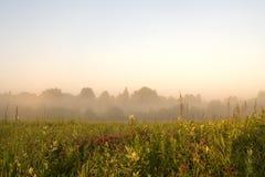 misty πρωί αυγής Στοκ Φωτογραφίες