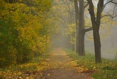 Misty πρωί φθινοπώρου στο πάρκο του Αλεξάνδρου Στοκ εικόνα με δικαίωμα ελεύθερης χρήσης