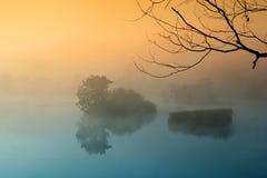 misty πρωί Στοκ Εικόνες
