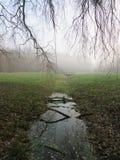 misty πρωί Στοκ εικόνες με δικαίωμα ελεύθερης χρήσης